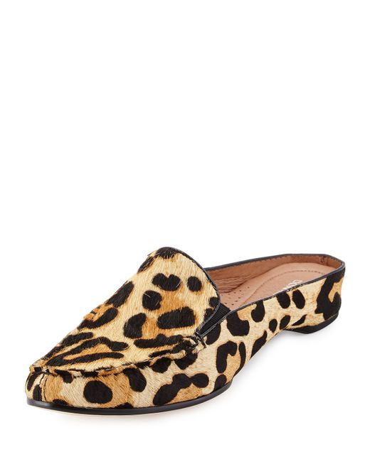 Welcome to order latest design shoes and clothing and Accessory sale Spain online store, wonderful style, just order on our website!