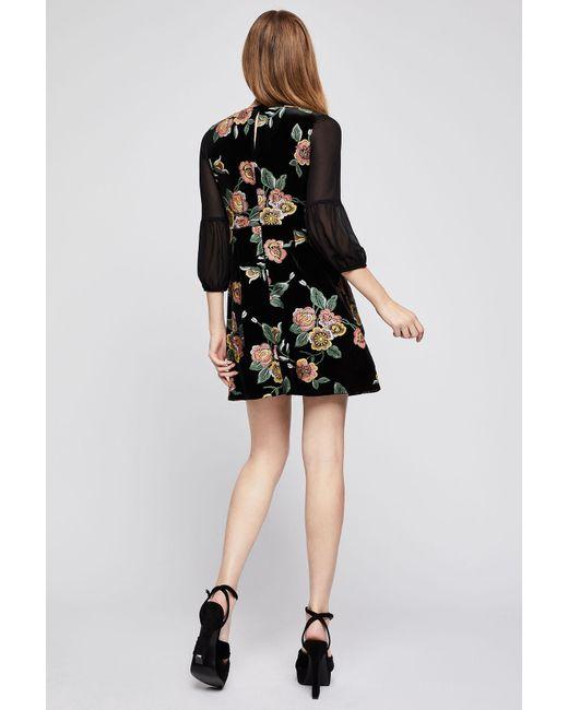 Lyst Bcbgeneration Empire Waist Floral Velvet Dress In Black