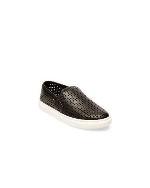 3114cc73d89 Lyst - Steve Madden Eileen Perforated Sneaker in Black