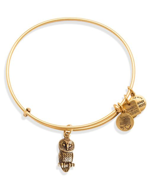 ALEX AND ANI | Metallic Ode To The Owl Expandable Wire Bangle, Charity By Design Collection | Lyst