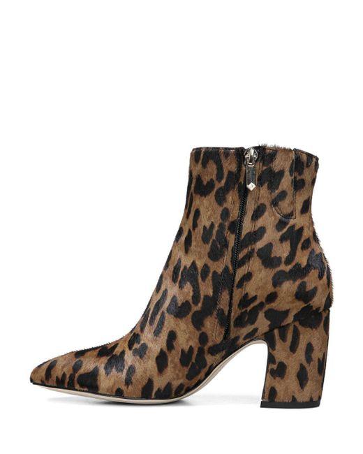b0b60a1ee ... Sam Edelman - Brown Women s Hilty Leopard Print Calf Hair Booties ...