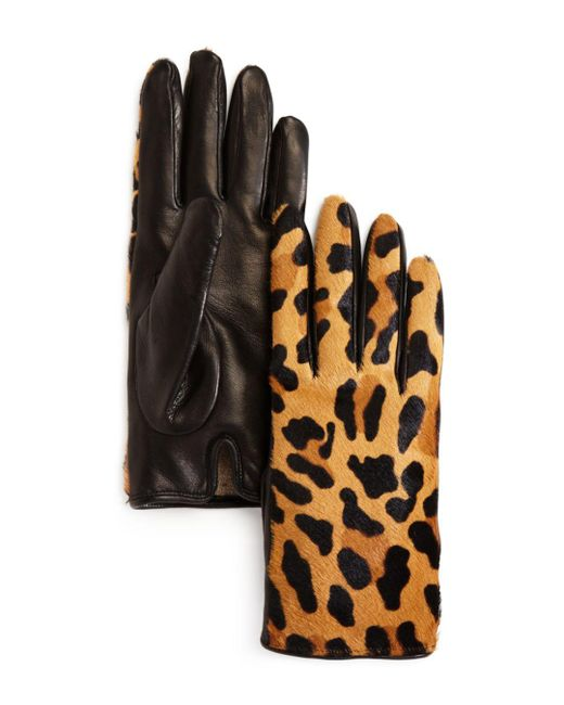 Bloomingdale's - Black Leopard Cashmere & Calf Hair Gloves - Lyst