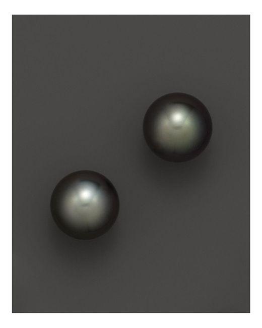 Tara Pearls - Black 11-12mm - Lyst