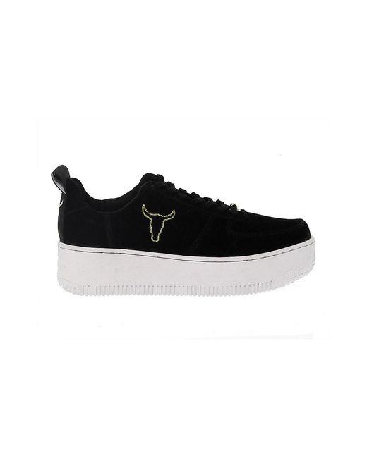 Windsor Smith - Racerr Black Suede Sneaker Women's Shoes (trainers) In Black - Lyst
