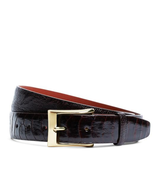 Brooks Brothers | Brown Ostrich Leather Belt for Men | Lyst