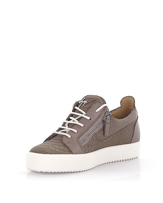 Giuseppe Zanotti | Gray Sneakers Nicki Low Top Leather Grey Python Embossed | Lyst