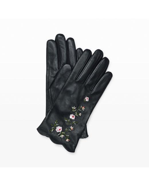 Club Monaco | Black Vidita Leather Glove | Lyst