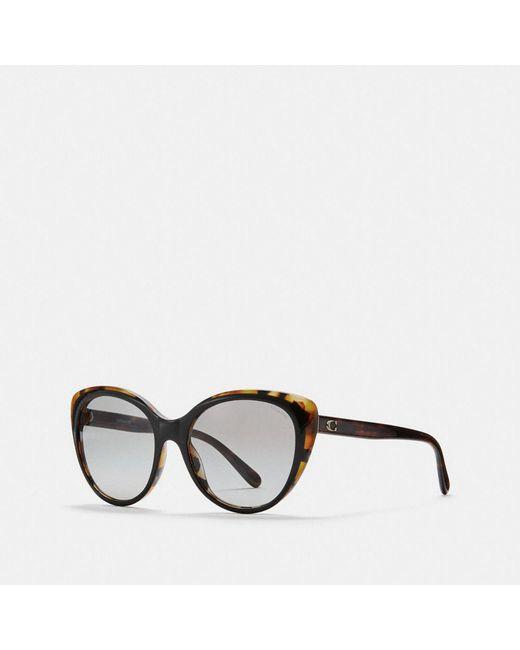 90bb8a2c0d COACH - Black Beveled Edge Cat Eye Sunglasses - Lyst ...