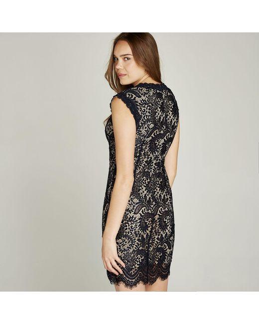 Apricot Black Lace Scallop Edge Dress In Black Lyst