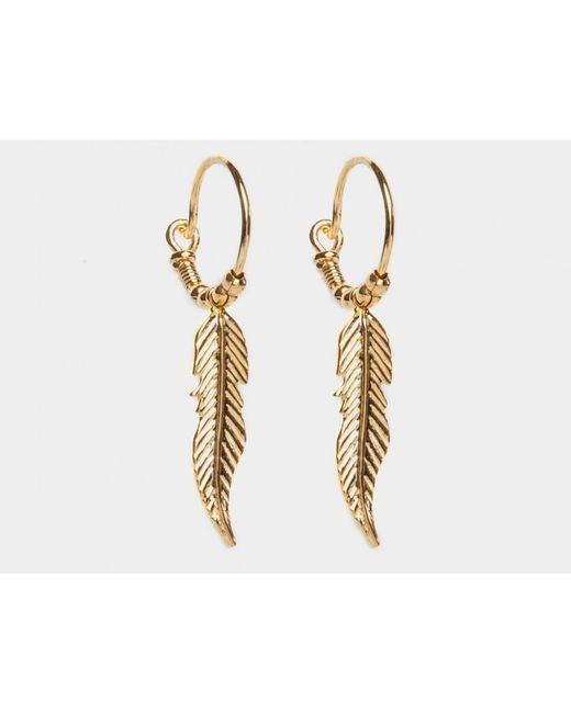 i+i | Metallic Feather Hoop Earrings | Lyst