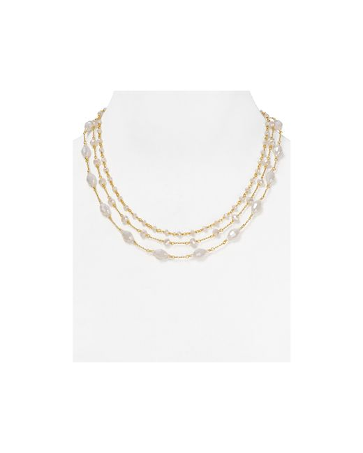 """Chan Luu 
