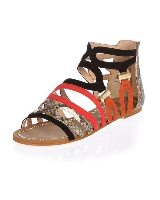 Snakeskin Print Shoes Womens