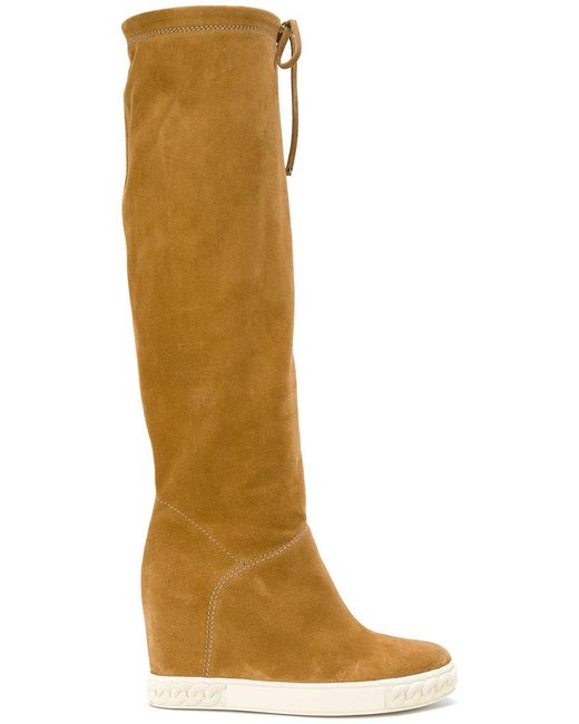 casadei knee high chaucer boots in brown lyst