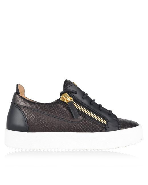 Giuseppe Zanotti - Black Python Embossed Trainers - Lyst