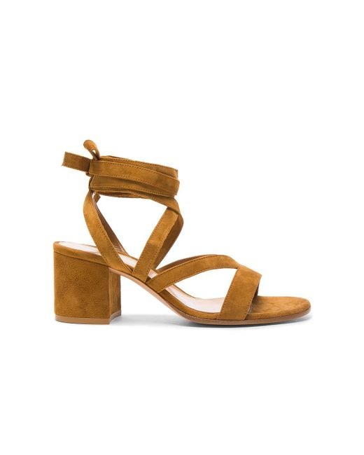 Gianvito Rossi | Brown Suede Janis Low Sandals | Lyst
