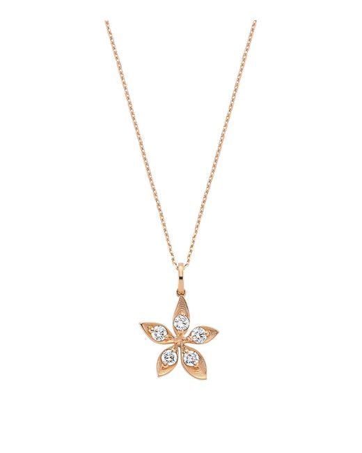 Bee Goddess   Metallic Diamond Apple Seed Necklace   Lyst