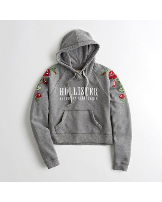 Hollister Sweaters Hollister Hoodies Hollister Shirts Hollister Jacket Hollister Pants Hollister Jeans: Hollister Embroidered Graphic Boxy Hoodie In Gray