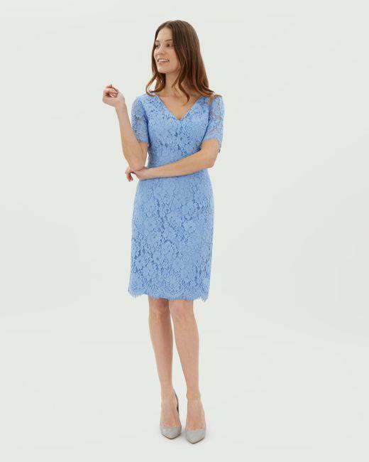 Jaeger - Blue V Neck Scallop Lace Dress - Lyst