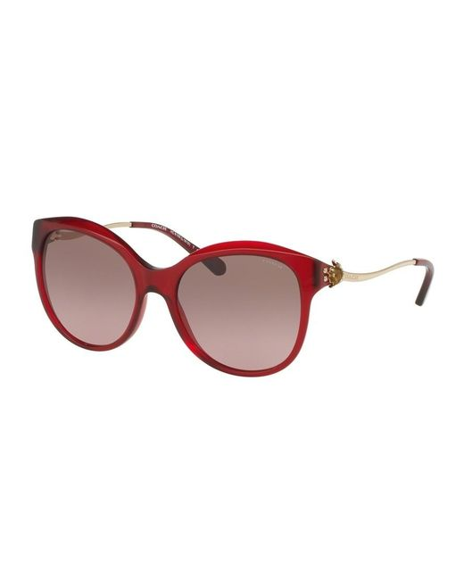 81835f8d40 Lyst - COACH Brown Rose Gradient Cat Eye Sunglasses in Red