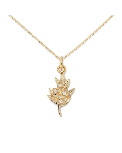 Delicacies Jewelry - Metallic 14kt Gold Olive Necklace - Lyst