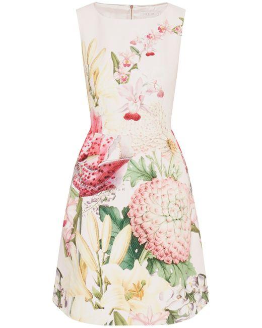 Ted Baker Gemisa Encyclopedia Floral Dress In Pink Nude