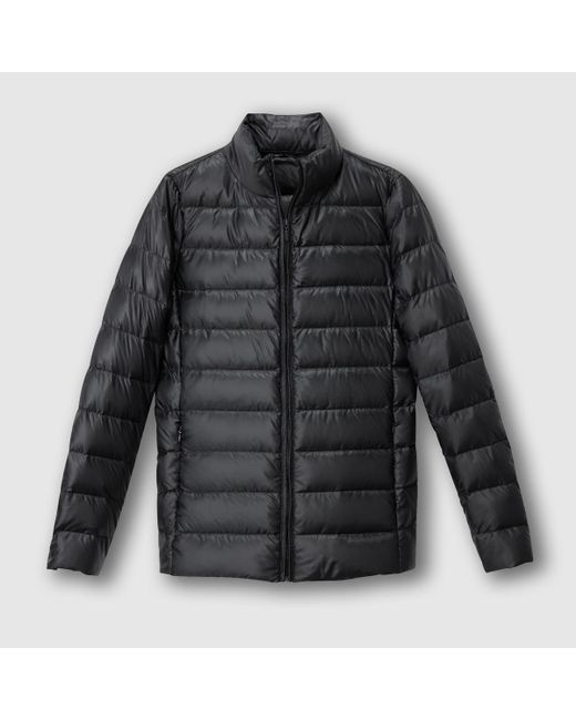 Black light padded jacket