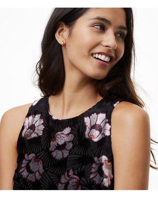 Lyst Loft Iced Floral Velvet Swing Dress In Black Save 81