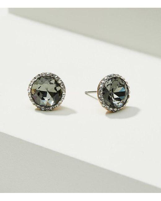 LOFT | Multicolor Pave Stone Stud Earrings | Lyst