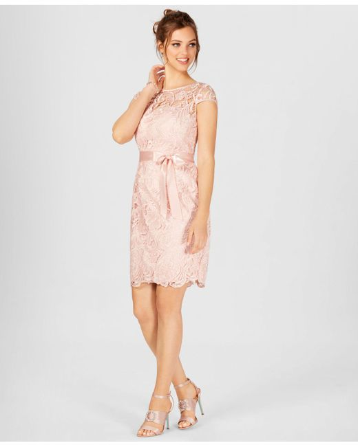 Adrianna Papell - Pink Cap-sleeve Illusion Lace Sheath - Lyst