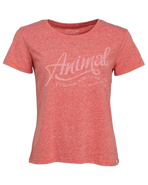 Animal Retreat Graphic T-shirt Sports Red Marl