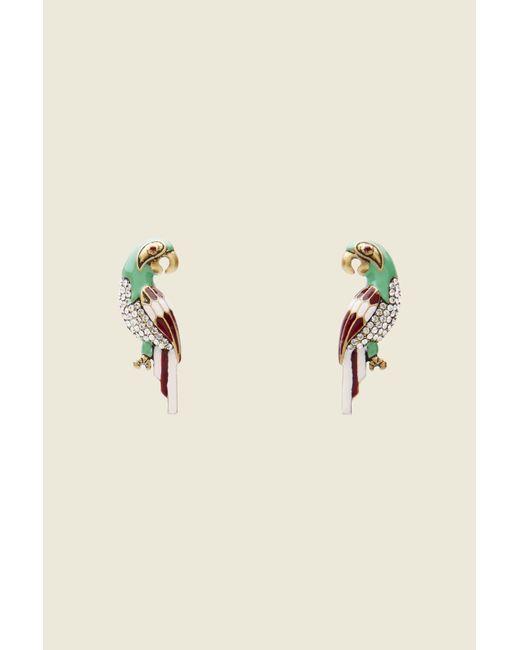 Marc Jacobs   Multicolor Big Parrot Studs   Lyst