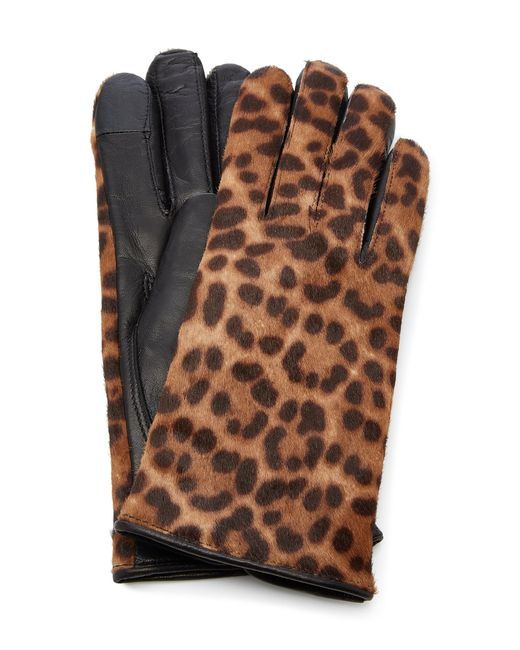 Maison Fabre - Brown Iggy Leather-trimmed Leopard-print Cashmere Gloves - Lyst