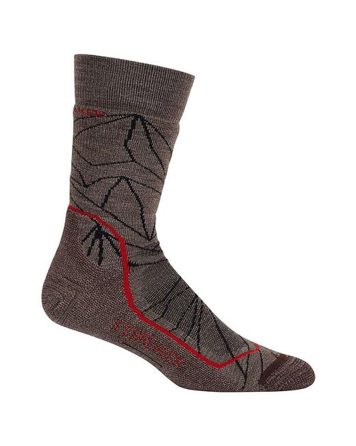 Icebreaker - Brown Hike+ Medium Crew Sock for Men - Lyst
