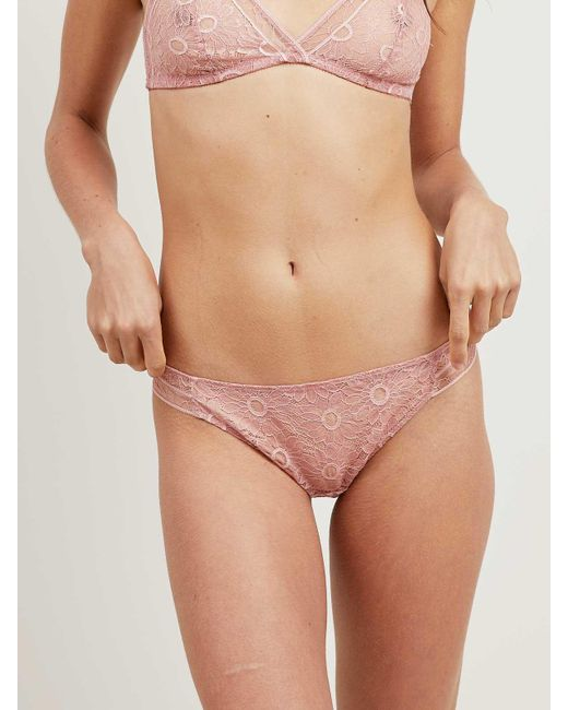 Morgan Lane - Pink Polly Thong In Misty Rose - Lyst