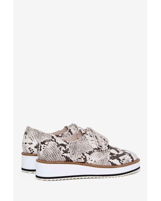 Shellys Shoes Mens