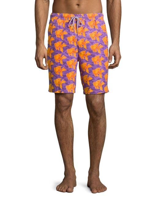 Peter millar koi fish clouds swim trunks in purple for for Purple koi fish for sale