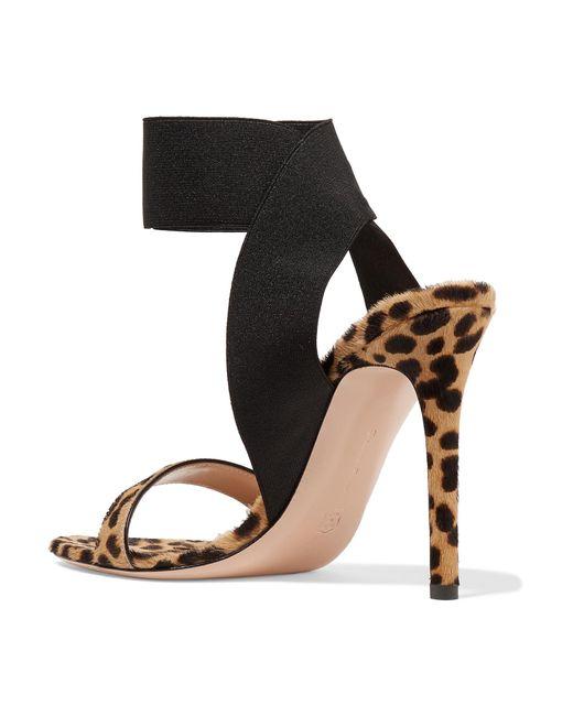 e68659f2f728 ... Gianvito Rossi - Multicolor 105 Leopard-print Calf Hair Sandals - Lyst  ...