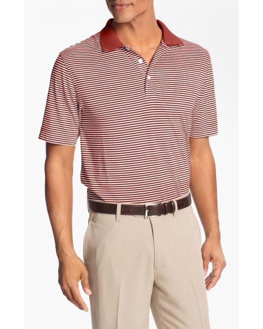 Cutter & Buck - Blue Trevor Stripe Drytec Polo for Men - Lyst