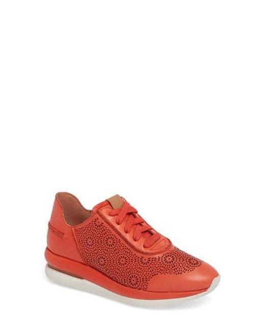 Kenneth Cole Gentle Souls Women's Raina Ii Leather Lace Up Sneakers cOQzwm