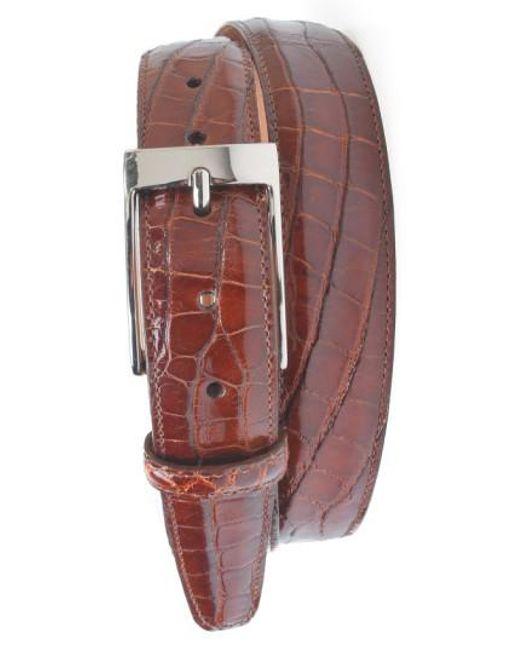 Martin Dingman   Brown 'joseph' Genuine American Alligator Leather Belt for Men   Lyst