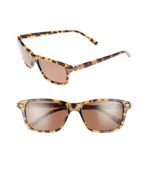 Ted Baker | Gray 55mm Polarized Sunglasses - Havana | Lyst