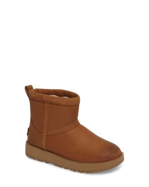 0dcce789db4 Women's Brown Ugg Classic Mini Genuine Shearling Lined Waterproof Boot