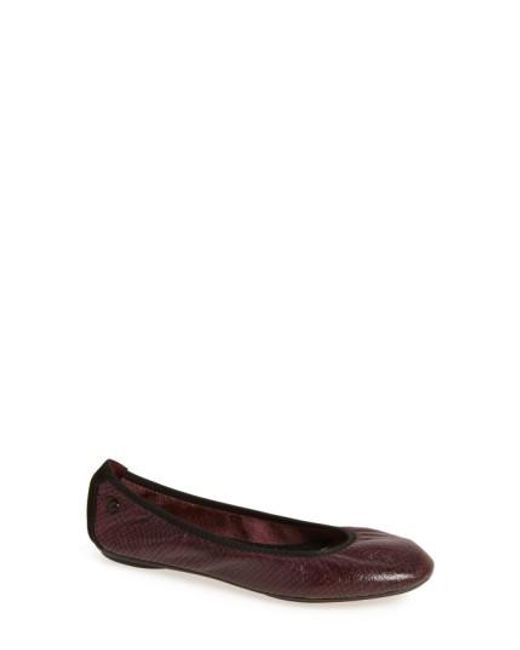 Hush Puppies | Multicolor Hush Puppies 'chaste' Ballet Flat | Lyst