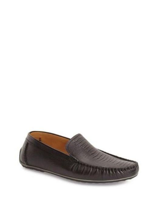 Zanzara | Black 'rembrandt' Driving Loafer for Men | Lyst