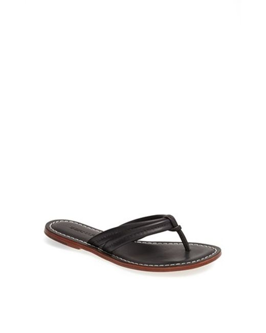 Bernardo | Brown Miami Sandal | Lyst
