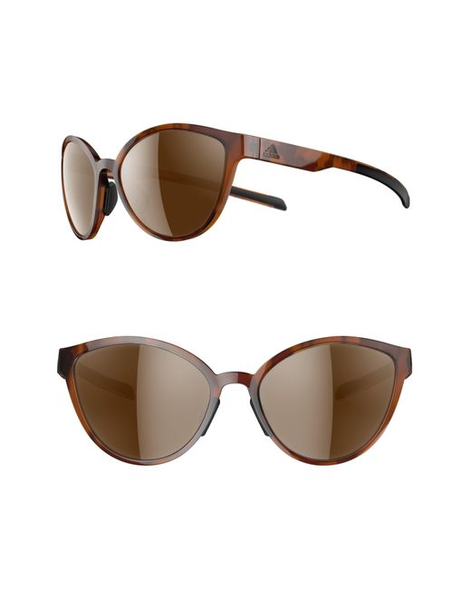 584efb8162 Lyst - adidas Tempest 56mm Running Sunglasses in Brown