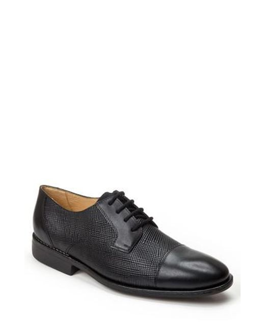 Sandro Moscoloni | Black Ronny Embossed Cap Toe Derby for Men | Lyst