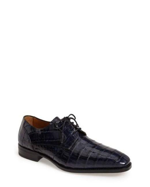 Mezlan | Blue 'orazio' Crocodile Plain Toe Derby for Men | Lyst