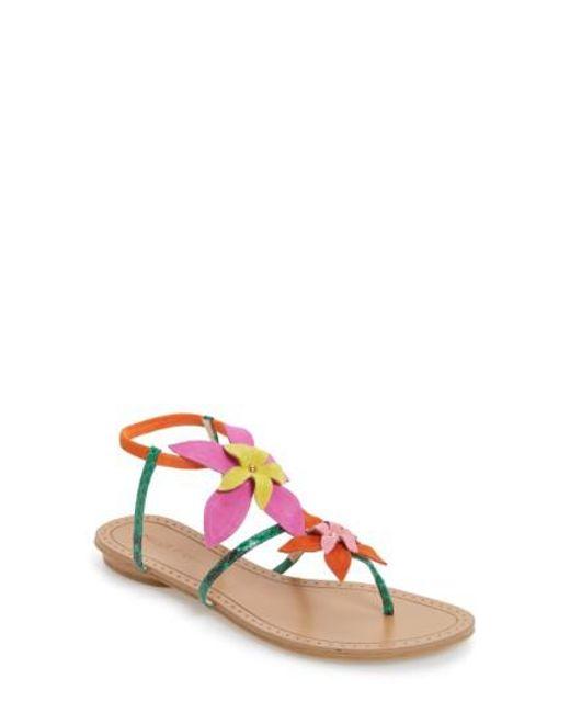 Pelle Moda | Pink Ellis Strappy Flowered Sandal | Lyst