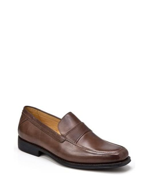 Sandro Moscoloni | Brown Edward Loafer for Men | Lyst